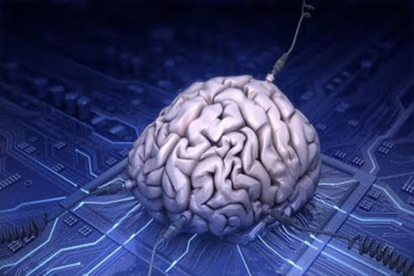 cerebro_internet_600x400