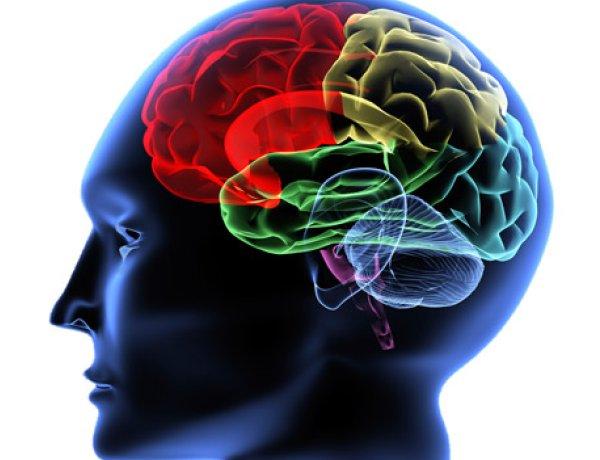 img_Estimular-cérebro-com-eletricidade-pode-acelerar-o-aprendizado