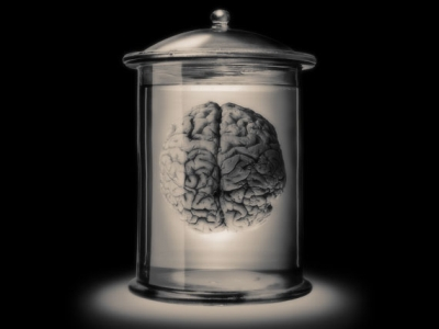 cerebro-embotado