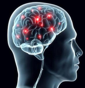 estudo-revelou-a-atividade-cerebral-que-