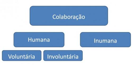 colaboracao