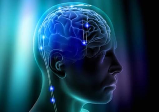 0-cerebro