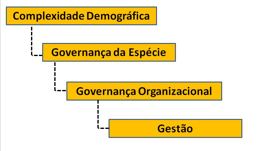 governançagestao
