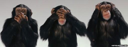 macacos-cego-surdo-e-mudo-t2