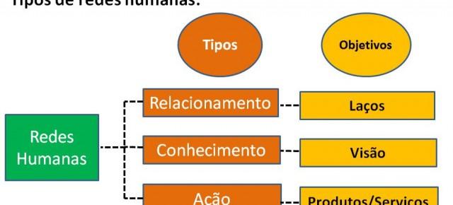 A relação dos dois tipos de ciências e os três tipos de redes