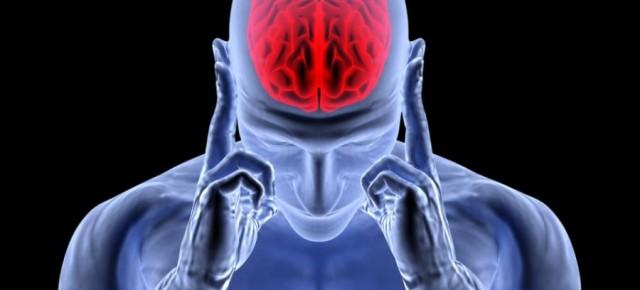 Cérebro indutivo