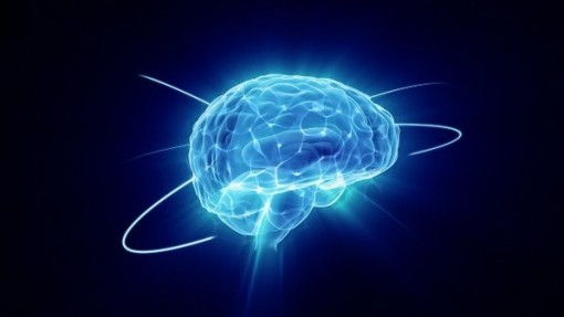 cerebro-2013-06-12-size-598-510x287