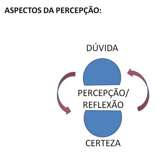 mapa-da-percepcao4